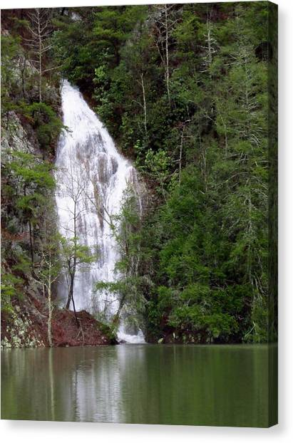 Little Laurel Branch Falls Canvas Print