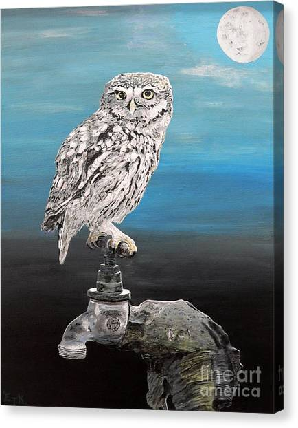Little Owl On Tap Canvas Print
