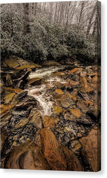 Little Pidgeon River2 Canvas Print by Tom  Reed
