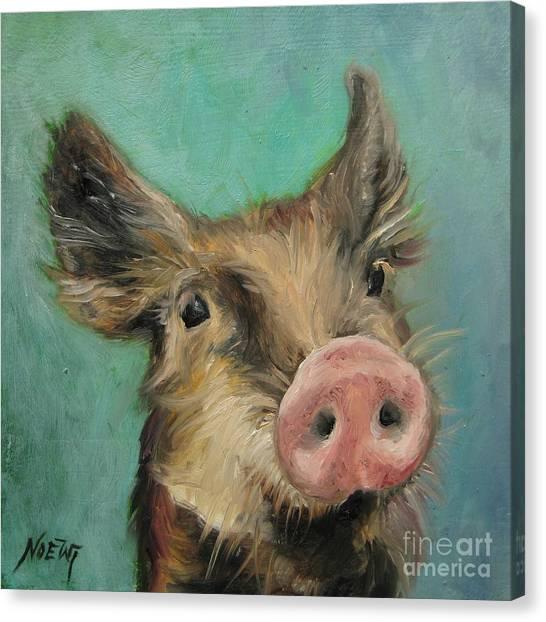 Little Piglet Canvas Print