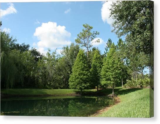 Little Pond Canvas Print