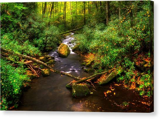 Little Santeetlah Creek Canvas Print