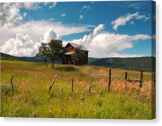 Little Shack In Ridgway Canvas Print