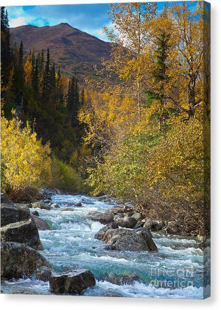 Little Susitna River Canvas Print