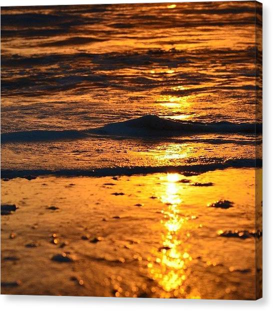 Gold Canvas Print - Little Wave by Alexa V