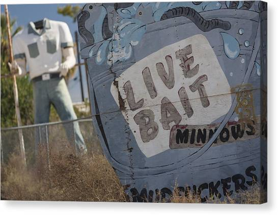 Live Bait And The Man Canvas Print