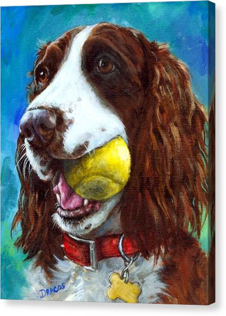 Tennis Ball Canvas Print - Liver English Springer Spaniel With Tennis Ball by Dottie Dracos