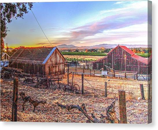 Livermore Barns Canvas Print