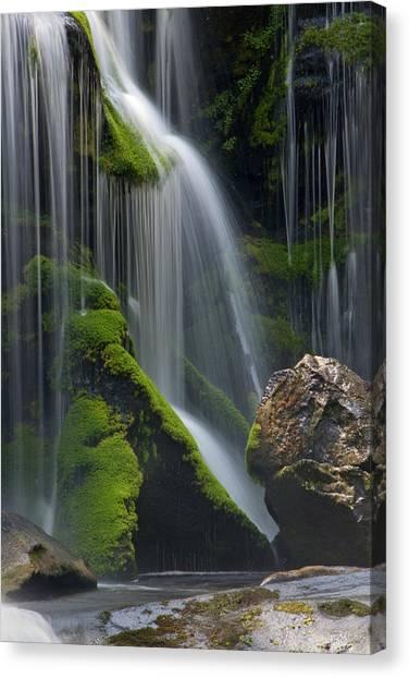 Living Water II Canvas Print