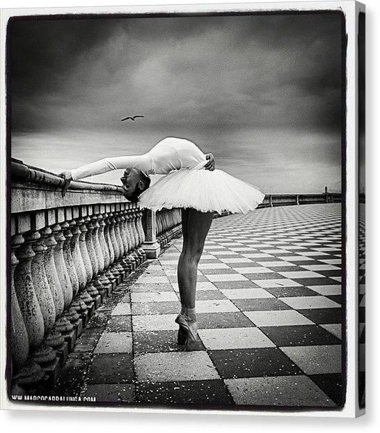 Ballerinas Canvas Print - Livorno Italy  #dance #dancer by Marco Cappalunga