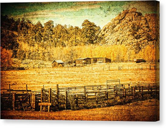 Loading Chutes At The Old Ranch Canvas Print