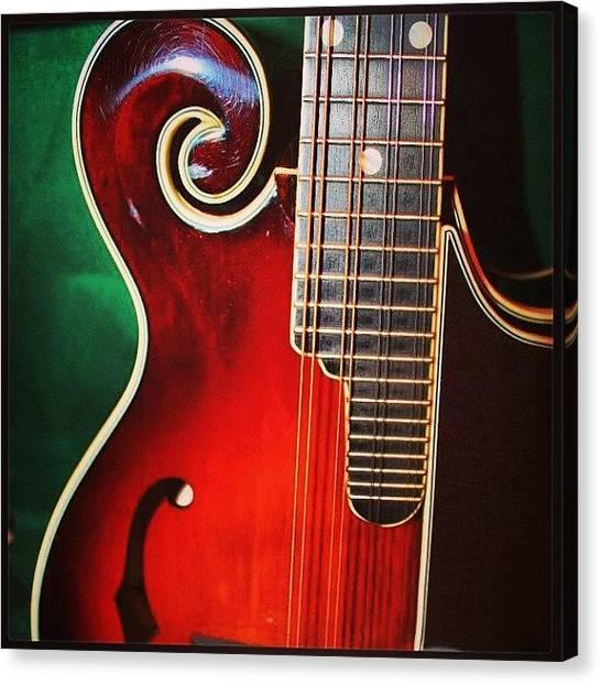 Mandolins Canvas Print - #loar #mandolin #music by Dee Fry