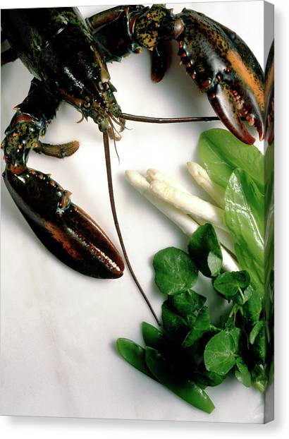 Watercress Canvas Print - Lobster, Asparagus, Sorrel, Watercress, Mangetout by Eising Studio - Food Photo and Video