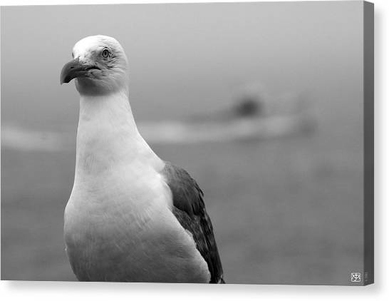 Lobster Boat Gull Canvas Print