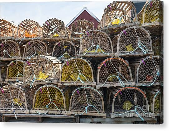 Lobster Canvas Print - Lobster Traps by Elena Elisseeva