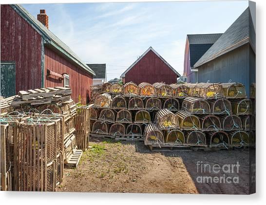 East Village Canvas Print - Lobster Traps In North Rustico by Elena Elisseeva