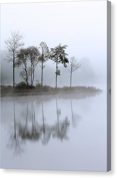 Loch Ard Trees In The Mist Canvas Print