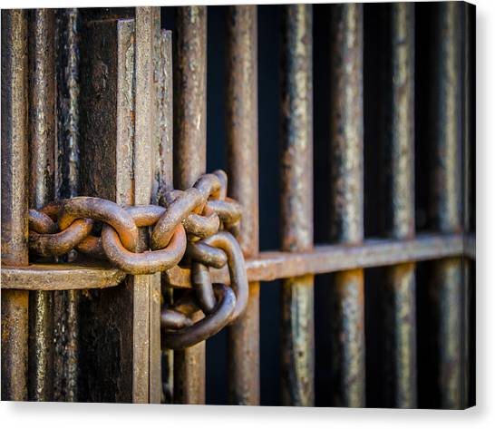Chain Link Fence Canvas Print - Locked Out by Carolyn Marshall
