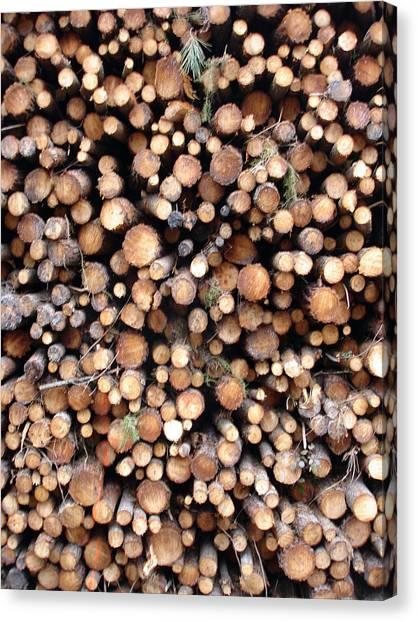 Logs Canvas Print by Michel Mata