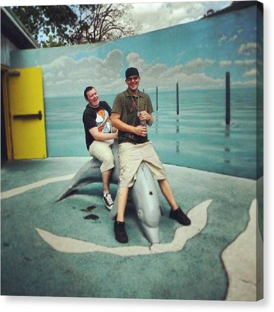 Dolphins Canvas Print - #lol #dolphin #blowhole #houstonzoo by Jake Tucker