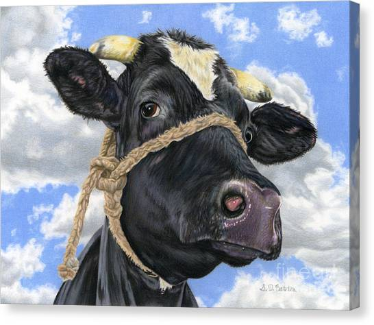 Cow Farms Canvas Print - Lola by Sarah Batalka