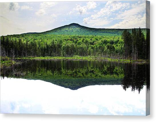 Lone Lake Canvas Print by Andrea Galiffi