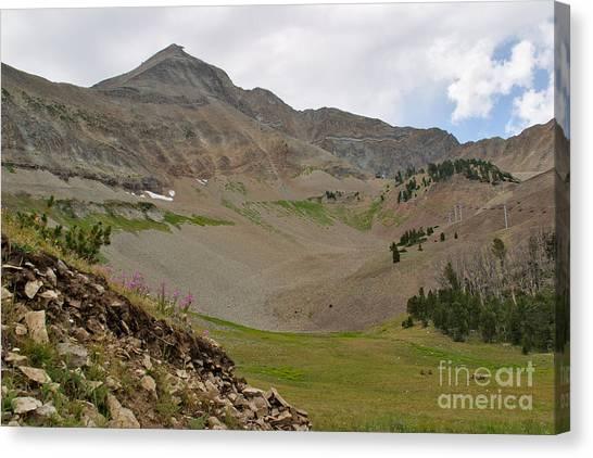 Lone Mountain Summit Canvas Print