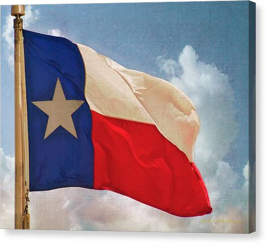 Lone Star Flag Canvas Print