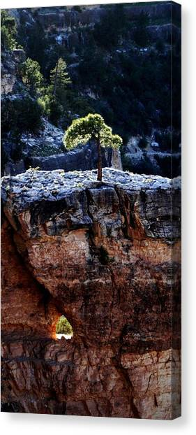 Lone Tree Heart Canvas Print by Alfredo Martinez