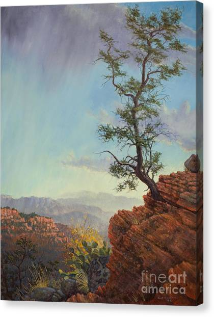 Lone Tree Struggle Canvas Print