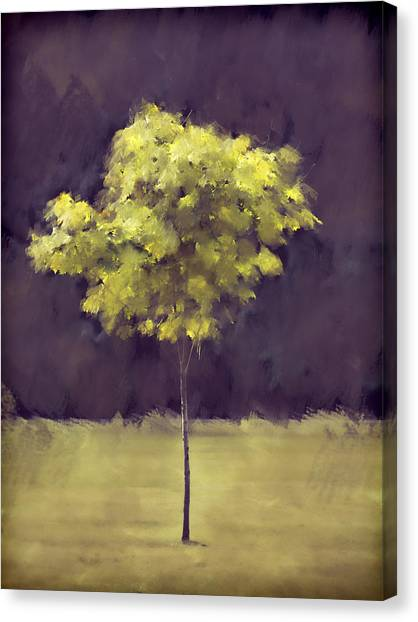 Tree Canvas Print - Lone Tree Willamette Valley Oregon by Carol Leigh