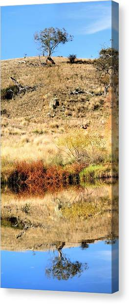 Canvas Print featuring the photograph Lone Tree With Reflection by David Rich