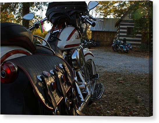 Scoot Canvas Print - Lone Wolf by Off The Beaten Path Photography - Andrew Alexander