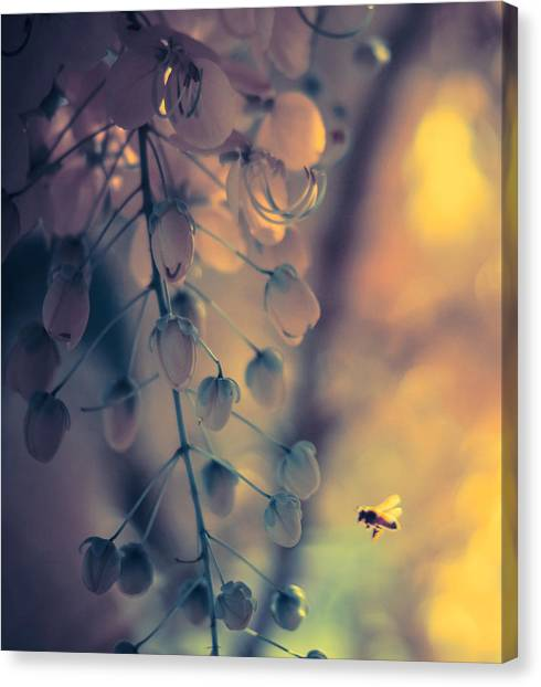Lone Worker Canvas Print
