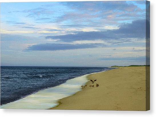 Lonely Cape Cod Beach Canvas Print