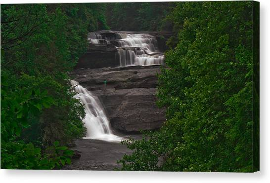 Lonely Fall Canvas Print