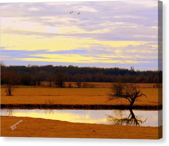 Lonely Pond Canvas Print