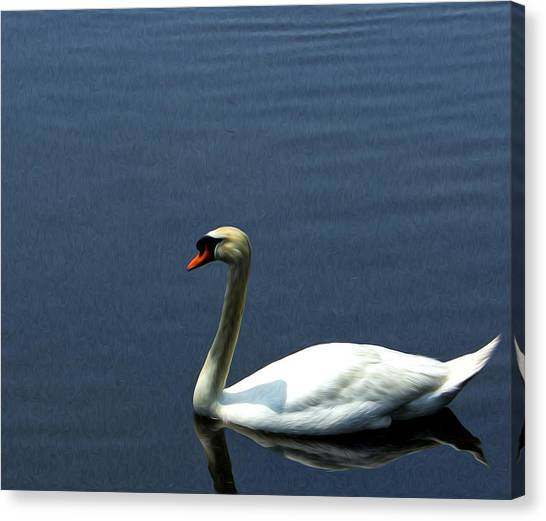 Lonesome Swan Canvas Print