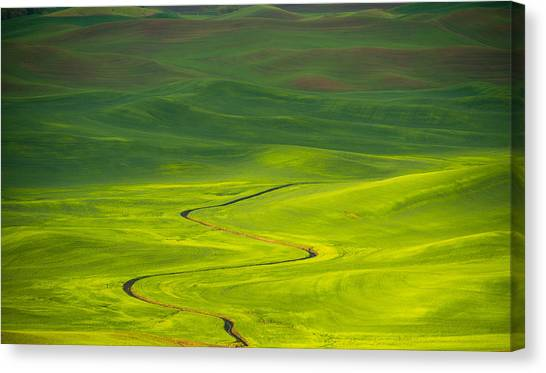 Long And Winding Road To Canvas Print