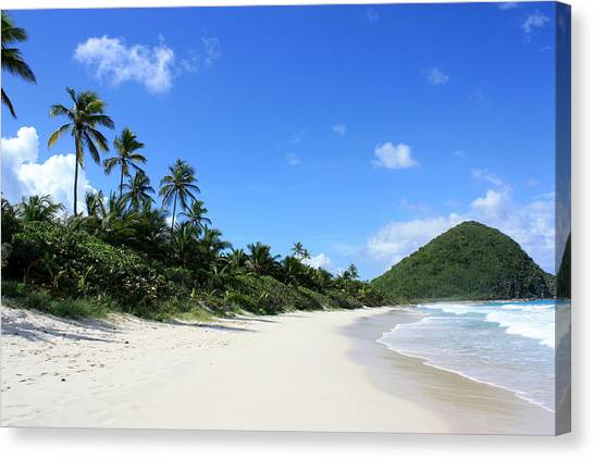 Long Bay Tortola Canvas Print by Laura Hiesinger