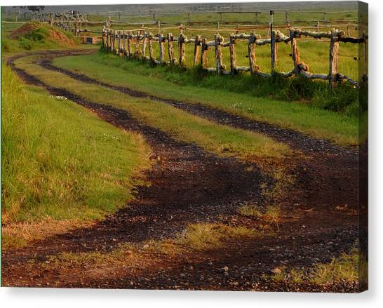 Long Dirt Road Canvas Print