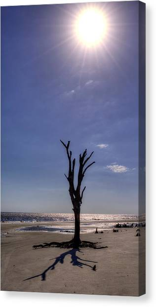 Long Shadow On Jekyll Island Canvas Print