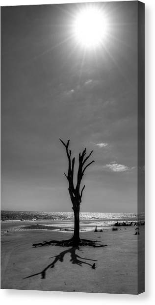 Long Shadow On Jekyll Island In Black And White Canvas Print