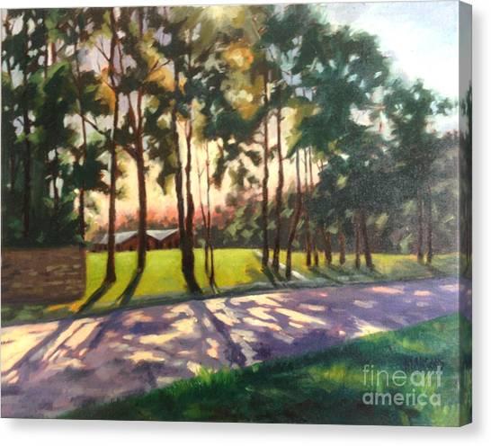Long Shadows On Longmire  Canvas Print