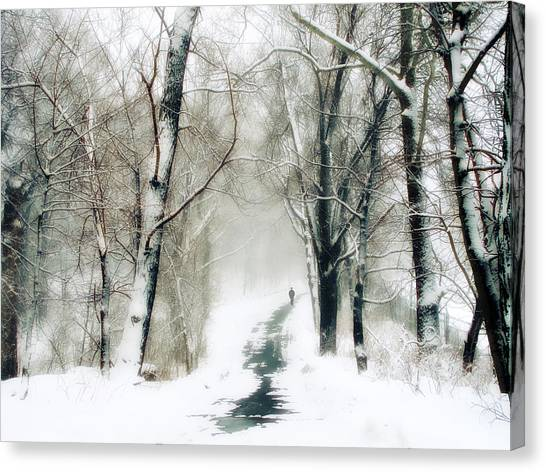 Forest Paths Canvas Print - Long Way Home by Jessica Jenney