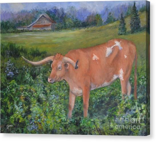 Longhorn Canvas Print by Jana Baker