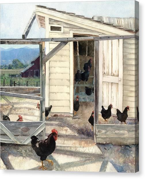 Longmont Henhouse Canvas Print