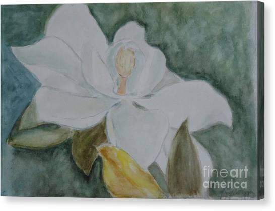 Longue Vue Magnolia 3 Canvas Print by Katie Spicuzza