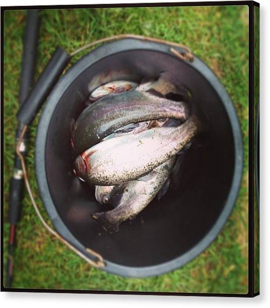 Trout Canvas Print - Look What We Caught Out And About by Louisa York