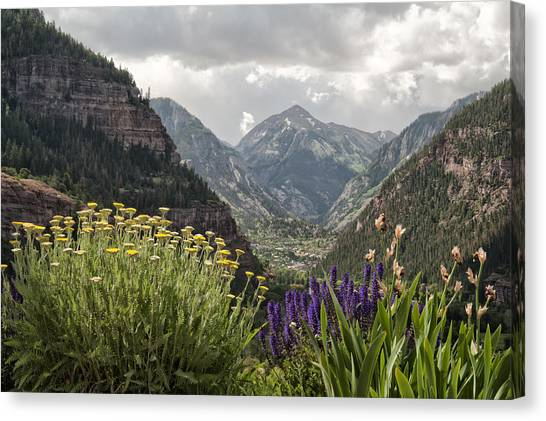 Looking Down On Ouray Colorado Canvas Print